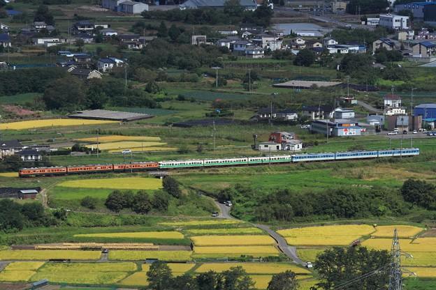 Photos: 9642M しなの鉄道115系S15+S7+S3編成 9両