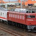 Photos: 回9146レ EF81 97+マヤ50-5001