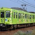 Photos: 2014レ 高松琴平電鉄1300形1301F 2両