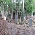 写真: 藤原実方の墓