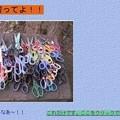 写真: 昔、作ったブログ3