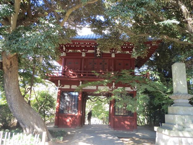 長谷山 本土寺