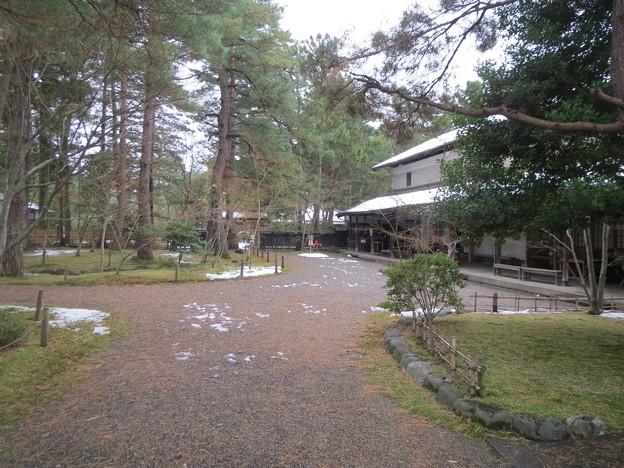 旧新発田藩下屋敷(清水谷御殿)庭園