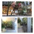 徳川慶喜公屋敷跡(浮月楼)
