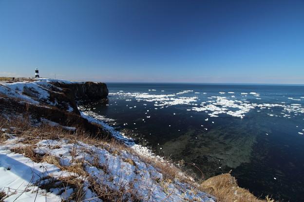 写真: 流氷残る能取岬1