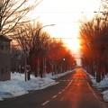 彼岸近づく夕日