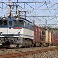 _MG_0754 鹿島貨物 EF65PF