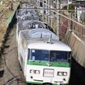 Photos: _MG_0828 成田山初詣横須賀号