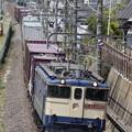 Photos: _MG_4058 1091レ 蘇我貨物