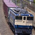 Photos: _MG_0196 鹿島貨物1093レ
