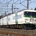 Photos: _MG_0971_SILKY 185系 「謎の快速」 成田山初詣伊東号