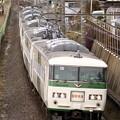 Photos: _MG_1030_SILKY 185系 謎の快速 「成田山初詣横須賀号」