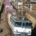 Photos: 0R8A0031_SILKY 「鹿島貨物」1093レ