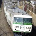 Photos: _R8A0223_SILKY 185系 成田臨