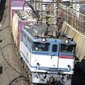Photos: _R8A0231_SILKY 「鹿島貨物」 1093レ