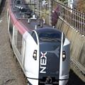 Photos: _R8A0451_SILKY E259系 成田エクスプレス19号