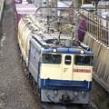 Photos: _R8A0468_SILKY 「鹿島貨物」1093レ  EF65PF