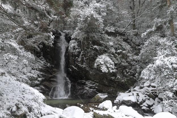 雪舞う花乱の滝