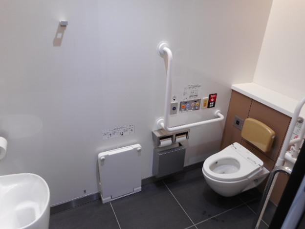 162ゆりかもめ豊洲駅トイレ(06)