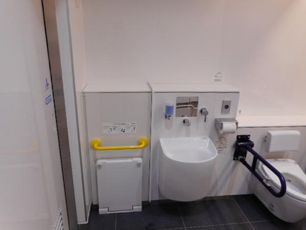 162ゆりかもめ豊洲駅トイレ(09)