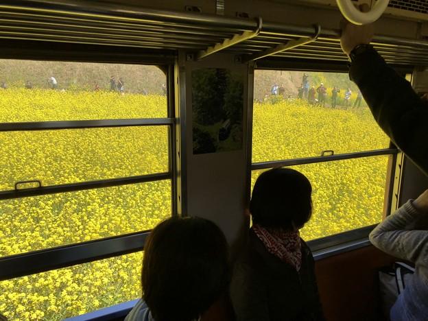 3月_小湊鐵道 8