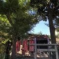 8月_石川神社 1