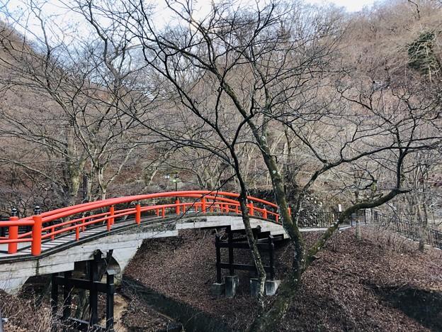 12月_河鹿橋 1