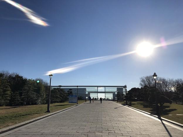 1月_葛西臨海公園 1