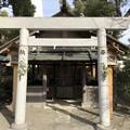 Photos: 2月_世木神社 1