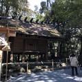 Photos: 2月_内宮 9