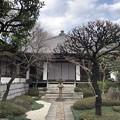 Photos: 2月_行慶寺 1