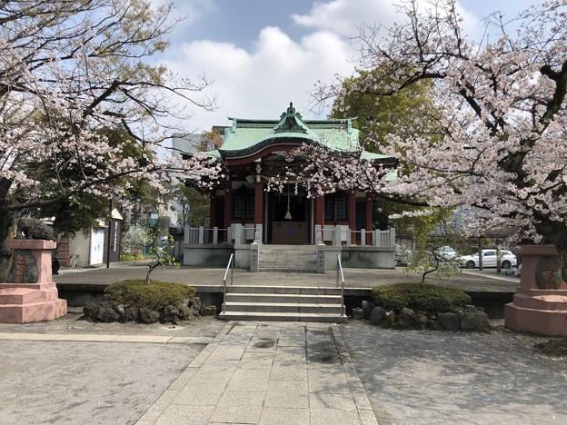 3月_洲崎神社 1