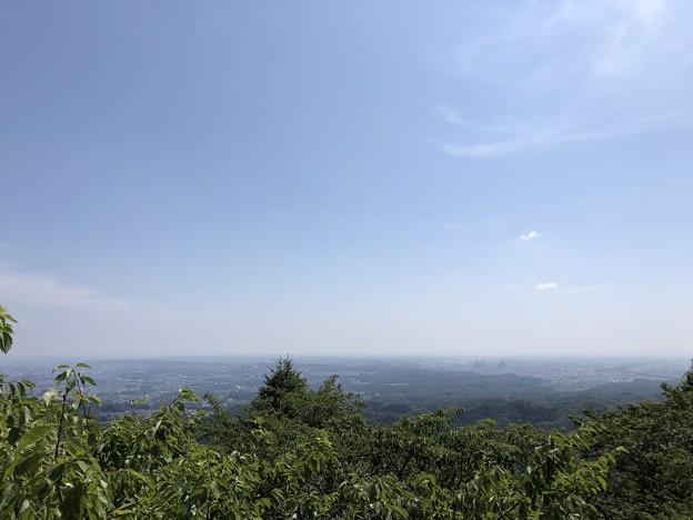 8月_高尾山 2