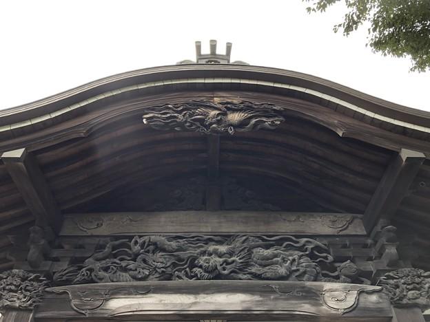 9月_国分寺 3