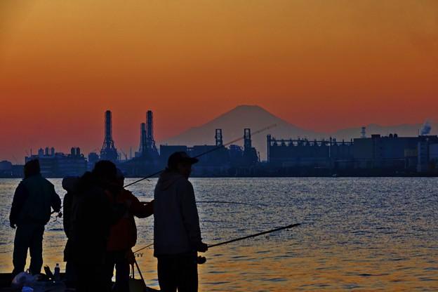 写真: 工場地帯を歩く。 -東扇島から工場越しの夕富士-