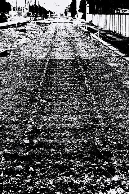 写真: 工場地帯を歩く。 -跡-