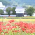 Photos: 穴太にて