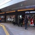 Photos: LITTLE MERMAID リトルマーメイド広島駅南口店 広島市南区松原町