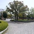 Photos: 広島平和記念公園 平和の時計塔から南方向 広島市中区中島町