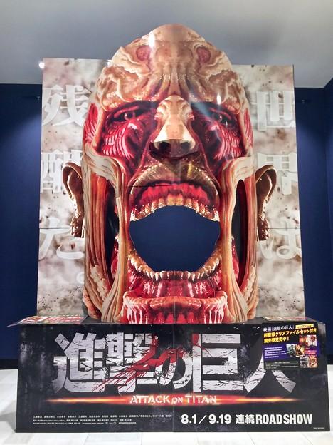 進撃の巨人 超大型巨人 Attack on Titan Colossus Titan