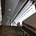 Photos: 広島駅 新幹線口 地下自由通路 階段 広島市南区松原町 2018年5月12日