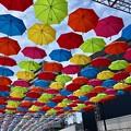 Photos: マツダスタジアム開場10週年イベント 傘まつり umbrella sky project 広島市南区西蟹屋2丁目 2018年5月27日