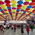 Photos: MAZDA Zoom-Zoom stadium Hiroshima 開場10週年イベント 傘まつり メインゲート 広島市南区西蟹屋2丁目 2018年5月27日