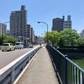Photos: 大正橋 広島市南区西蟹屋1丁目 - 的場町2丁目 段原3丁目 2018年6月4日