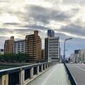 Photos: 東広島橋 広島市南区稲荷町 - 中区東平塚町 2019年1月11日