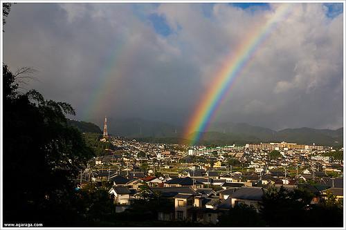 虹の高槻(アクアピアから)