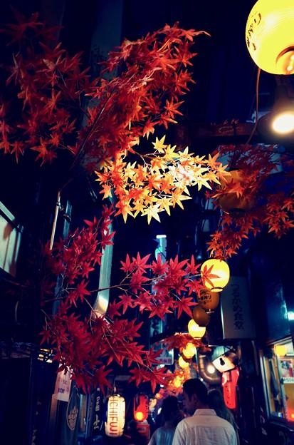 Photos: 思い出の横丁