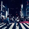 Photos: 横断歩道
