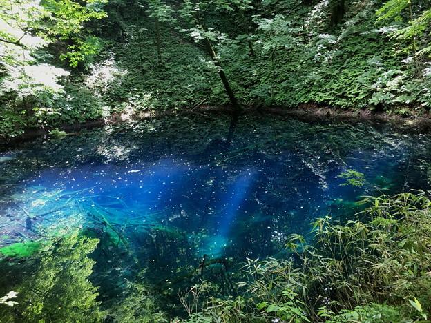 十二湖の「青池」