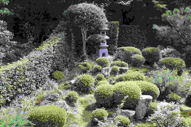聚碧園 庭園